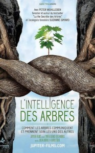 L'intelligence des arbres (2017)